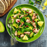 Healthy Salmon, Avocado salad with watercress and goji berries, pumpkin seed mix on green plate.  Stock Image
