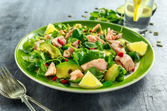 Healthy Salmon, Avocado salad with watercress and goji berries, pumpkin seed mix on green plate.  Stock Photography