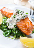 Healthy Salmon Steak with salmon. Healthy Grilled Salmon with Spinach, Tartare Cream and Lemon Wedges close up Stock Image