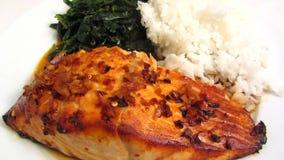 Healthy Salmon Teriyaki stock video