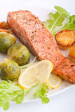 Healthy salmon with vegetables Royalty Free Stock Images