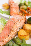 Healthy salmon with vegetables Stock Photography