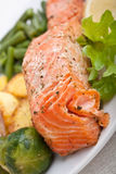 Healthy salmon with vegetables. Close-up of healthy salmon with vegetables on white plate Royalty Free Stock Image