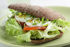 Healthy sandwich Royalty Free Stock Photo