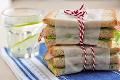Healthy Sandwich Royalty Free Stock Images