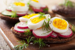Healthy sandwich with egg radish cucumber Royalty Free Stock Image