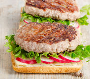 Healthy sandwich Royalty Free Stock Image