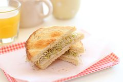 Healthy Sandwich lunch Stock Images