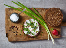 Healthy sandwich with organic multi grain bread, cream cheese an Royalty Free Stock Photo