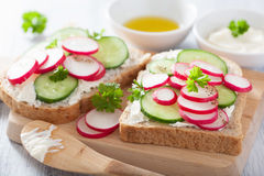 Healthy sandwich with radish cucumber and cream cheese.  Royalty Free Stock Photography