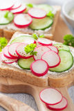 Healthy sandwich with radish cucumber and cream cheese.  Stock Photography