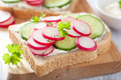 Healthy sandwich with radish cucumber and cream cheese. Healthy sandwich with radish cucumbers and cream cheese Royalty Free Stock Image
