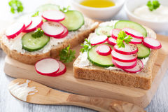 Healthy sandwich with radish cucumber and cream cheese Stock Images