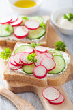 Healthy sandwich with radish cucumber and cream cheese. Healthy sandwich with radish cucumbers and cream cheese Stock Photography