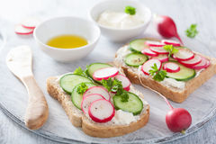 Healthy sandwich with radish cucumber and cream cheese. Healthy sandwich with radish cucumbers and cream cheese Stock Image