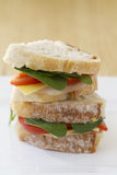 Healthy sandwich vertical. Healthy ham and salad sandwich on a plate in vertical format Royalty Free Stock Images