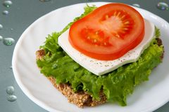 Healthy sandwich. With wholegrain bread, salad, cheese and tomato Royalty Free Stock Image