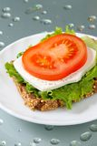 Healthy sandwich. With wholegrain bread, salad, cheese and tomato Royalty Free Stock Photo