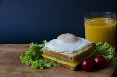 Healthy sandwiches with cheese and easily fried egg presented on a wooden board with salad, tomato and orange juice. Tasty food Royalty Free Stock Image