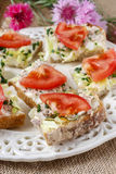 Healthy sandwiches with tomatoes, lettuce and fish Stock Photos