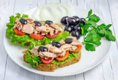 Healthy sandwiches with tuna fish. On the white plate Royalty Free Stock Image