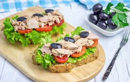Healthy sandwiches with tuna fish. On the wooden board Royalty Free Stock Images