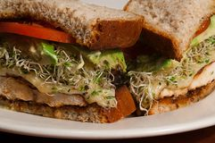 Healthy Sandwitch Close Up. Clean, tight shot of a freshly made club sandwich at a health bar Stock Image