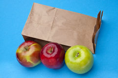 Healthy School Lunch Royalty Free Stock Photo