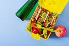 Healthy school lunch box with beef sandwich and fresh vegetables. Bottle of water and fruits on blue background. Top view. Flat lay stock images