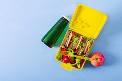 Healthy school lunch box with beef sandwich and fresh vegetables. Bottle of water and fruits on blue background. Top view. Flat lay royalty free stock photos