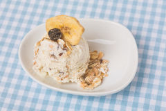 Healthy scoop of granola ice cream Royalty Free Stock Images