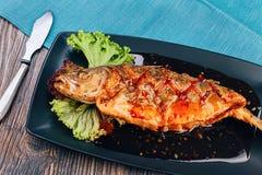Healthy sea bass fish Stock Photography