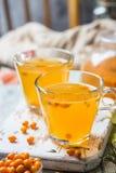 Healthy sea buckthorn tea royalty free stock photo
