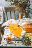 Healthy sea buckthorn tea royalty free stock photos