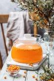 Healthy sea buckthorn tea royalty free stock photography