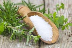 Healthy sea salt and fresh herbs Royalty Free Stock Photos