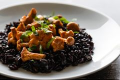 Seared girolles mushrooms with black rice stock image