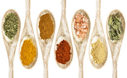 Healthy seasoning and spices Stock Image