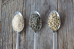Healthy seed like grains Stock Photos