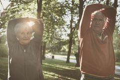 Senior couple relaxing and working exercise together in park. Stock Image