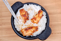 Healthy sesame chicken Stock Images