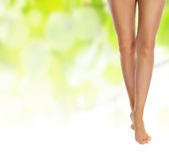 Healthy sexy slender female legs Stock Photo