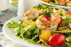 Healthy Shrimp and Arugula Salad Royalty Free Stock Photos