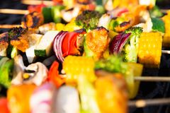 Healthy Skewers on the Barbecue Stock Photos