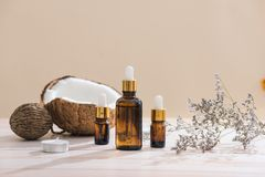 Healthy skincare. Pure coconut oil is made from organic coconut. On wooden background Stock Images