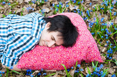 Healthy sleep. Man. Pillow. Flowers Stock Photos