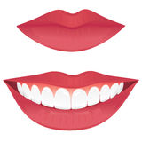 Healthy smile. Closed lips and a smiling mouth with healthy teeth isolated on white Stock Photography