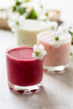 Healthy smoothies collection Stock Images