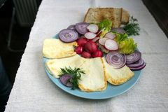 Healthy snack, cheese along with radishes and red onion rings Royalty Free Stock Photography