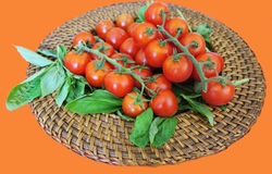 Healthy snack of cherry tomatoes on a stem with basil on wicker plate for vegans Stock Photography
